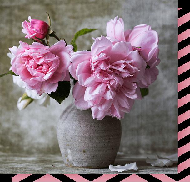 Votre boutique de fleurs et cadeaux par excellence for Fleuriste rose